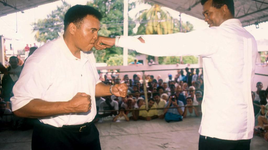 Iako je javnost željno iščekivala njihov meč, borba između Alija i Stivensona se, ipak, nikada nije održala.