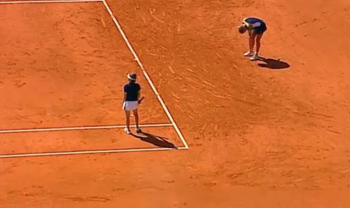 Martina Hingis je prešla na drugu stranu mreže kako bi dokazala da je lopta završila na liniji.